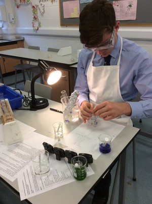 Biology a level practical on photosynthesis 2