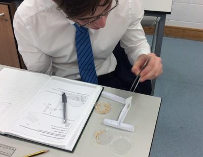 Biology animal behaviour practical