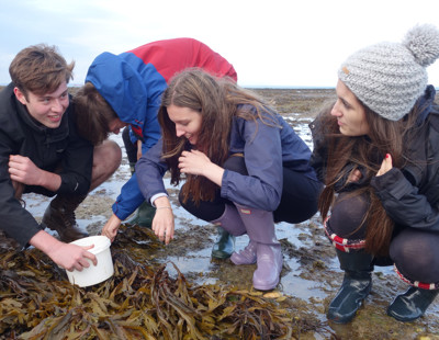 Biology field trip to isle of wight 1