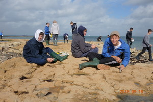 Biology field trip to isle of wight 4