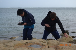 Biology field trip to isle of wight 5