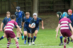 Rugby gallery 19